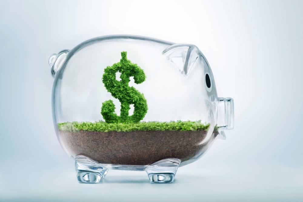 Clear piggy bank with soil and a plant-like money sign